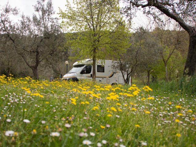 Kamperen in het voorjaar