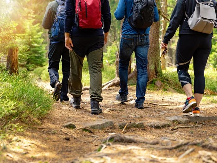 Langs het Pieterpad: wandelen én kamperen